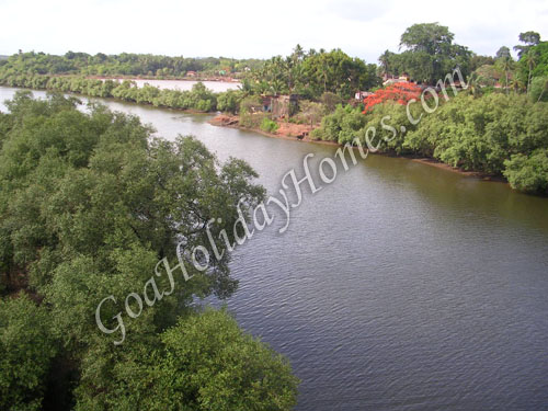 Banastari Bridge in Goa