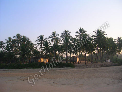 Cansaulim Beach in Goa in Goa