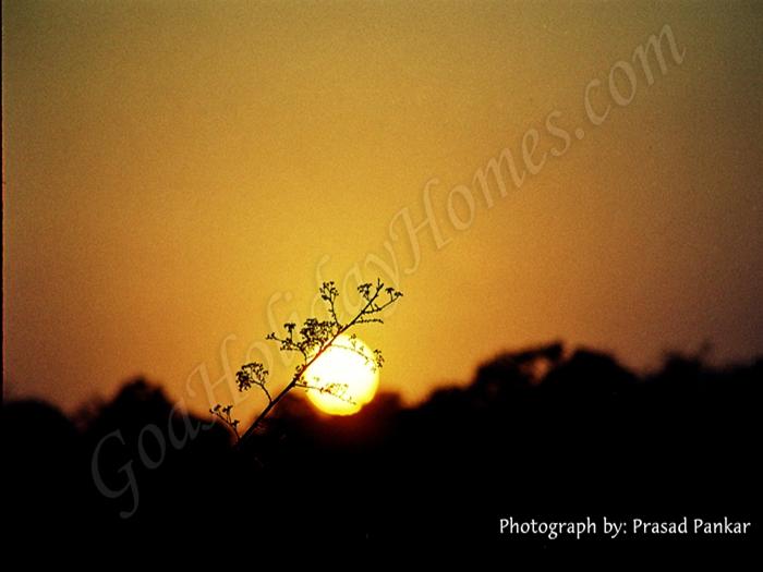 Cuncolim in Goa