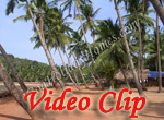 Video clip of Hollant Beach