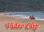 Video clip of Agonda Beach
