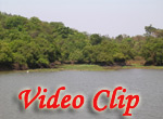 Video clip of Maya Lake