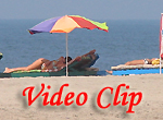 Video clip of Morjim Beach In Goa