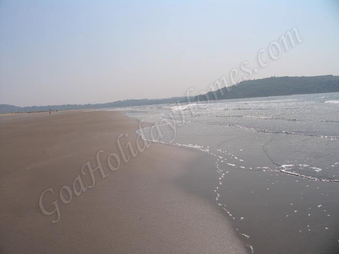 Morjim Beach In Goa in Goa