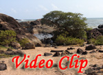 Video clip of Colom beach
