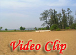 Video clip of Miramar Beach In Goa
