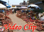 Video clip of Mapusa Market