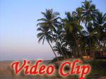 Video clip of Cansaulim Beach in Goa