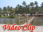 Video clip of Mandrem Beach