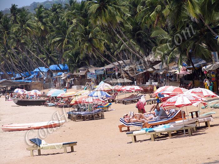 Palolem Beach In Goa in Goa