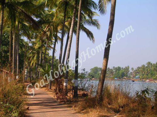 Coco Beach in Goa, Goa Coco beach info, Places to visit at ...
