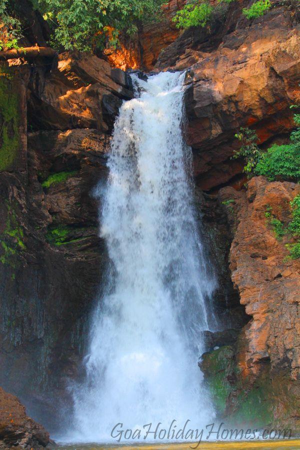 Arvalem Waterfalls Goa Waterfalls In Arvalem Goa Near