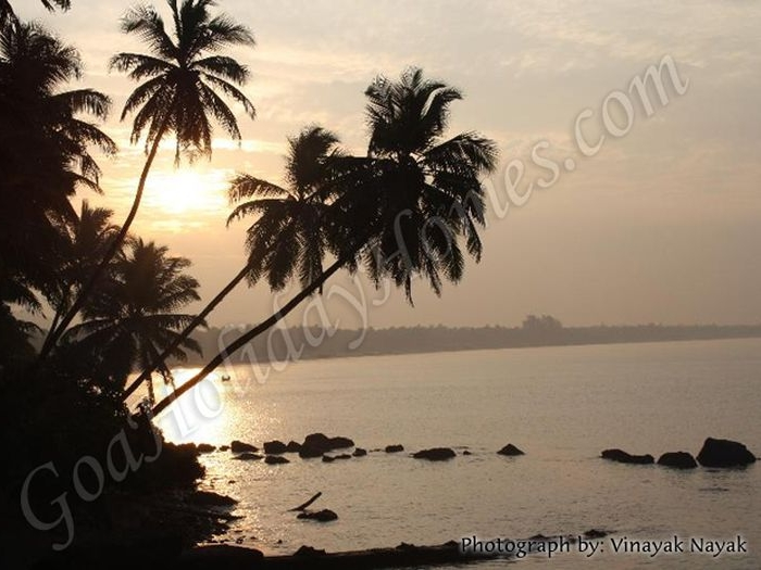 Hollant Beach in Goa