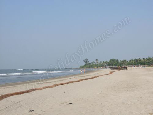 Morjim Beach In Goa in Goa