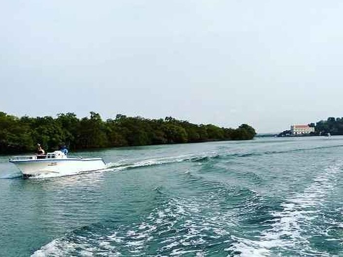 Rediscovery Cruises in Goa