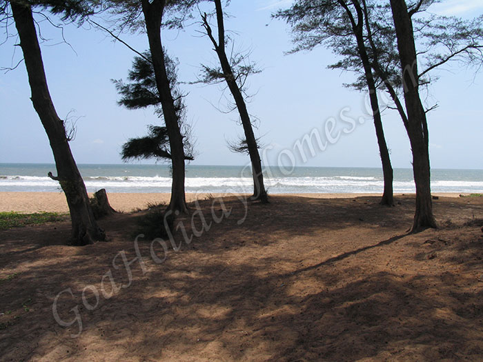 Talpona Beach in Goa