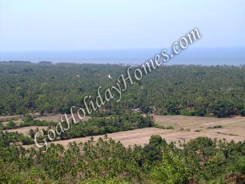Velsao in Goa