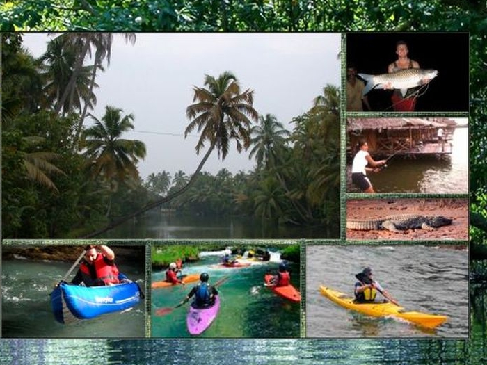 Wild Goa in Goa