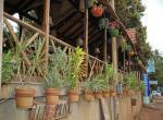 The Stone House - Bristro & Grill in Candolim, North Goa